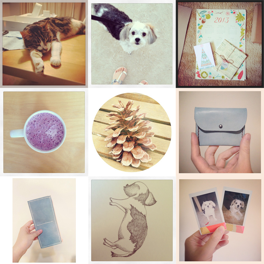 january_instagrams