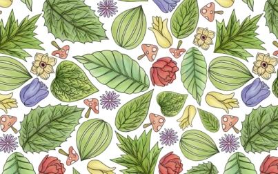 leaves_flowers